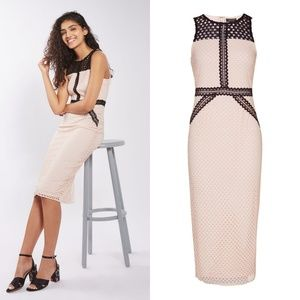 Topshop Geometric Lace Contrast Midi Dress